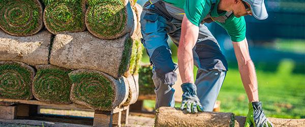 tuin aanleggen Spijkenisse